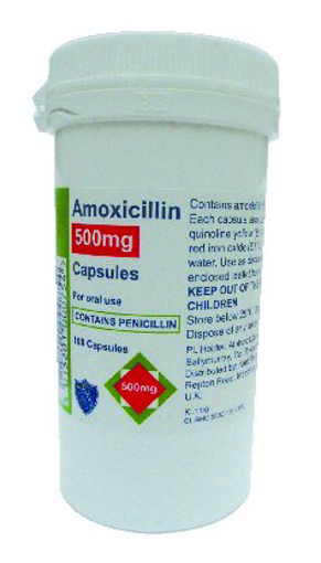 Picture of Amoxicillin 500mg Capsules (100)