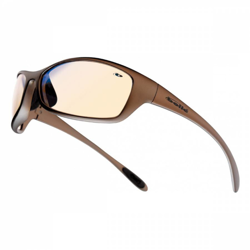 Picture of Bolle SPIDER (SPIESP) TINT Glasses